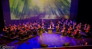Mohamad Hamami and Sharq Orchestra / 2014